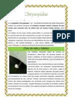 Chrysopidae.docx
