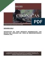 Caso lizeth, reparación del daño, pdf.pdf