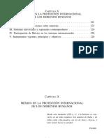 12 - Capitulo 10 - proyeccion internacional de los derechos humanos.pdf