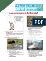 Contaminación Ambiental 1 Convertido
