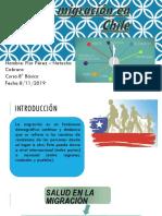 La Migración en Chile Flor