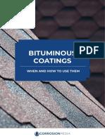 bituminous coat.pdf
