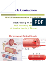 Muscle Contraction DMS