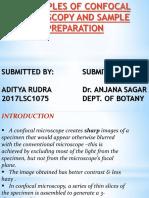 Ppt Botany