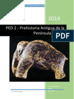 PED_2_PAPI_ACG (1).pdf