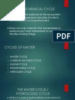 Biogeo Cycle