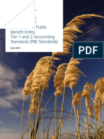 Public accounting standards