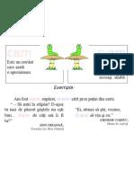 Plansa Ortograme - Cam, C-Am
