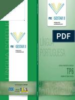 GESTAR II tp6_portugues_jul08.pdf