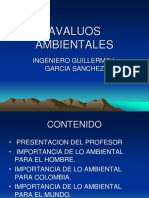 AVALUOS AMBIENTALES.ppt