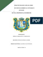 Jurisdicción y Competencia Salcedo Calluchi Elida