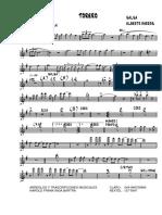 Torero (Alberto Barros)(banda).pdf
