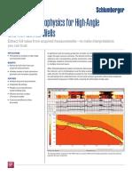 techlog_3d_petrophysics.pdf