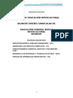 CURRICULO DE EGBIB - CASTELLANO.docx