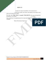 RAPPORT DE NATH MINING NEB.pdf