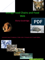 Biology Food Chains and Food Web