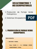 Clase-5-Especies-Alternativas-y-Sistemas-Silvopastoriles-EXAMEN.ppt