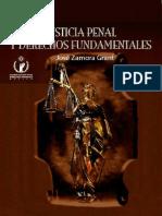 Justicia Penal y Derechos Fundamentales