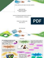 ACTIVIDAD INDIVIDUAL . JULIETH PERILLA.pdf