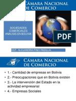 Empresas en Bolivia Analisis