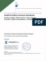 Annex 5 - H&S Standards.pdf