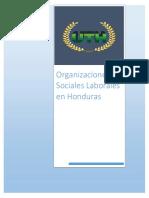 Informe Organizaciones Sociales