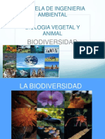CLASE 1. Biodiversidad 13.08.2019