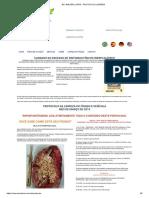 Protocolo de Limpeza do Fígado Professor  Walter Lopes