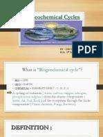 BIOCHEMICAL CYCLE