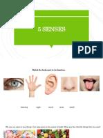 5 senses review