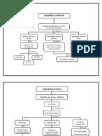 81000427-Mapa-Conceptual.docx