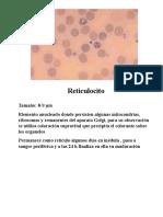 atlas hematológico 1.ppt