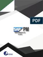 SAP PM