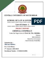 IPC PROJECT.docx
