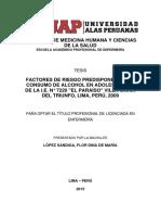 """FACTORES DE RIESGO PREDISPONENTES AL CONSUMO DE ALCOHOL EN ADOLESCENTES DE LA I.E. N° 7220 """"EL PARAÍSO"""" VILLA MARÍA DEL TRIUNFO, LIMA, PERÚ, 2009"""