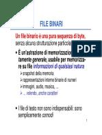 6.16_File_binari