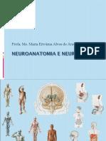 Neuroanatomia e Neurociência Psic AULA 1