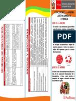 CARA 1.pdf