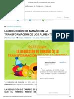 La Reducción de Tamaño en La Transformación de Los Alimentos