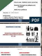 Presentación Caso Penal LESIONES 2007