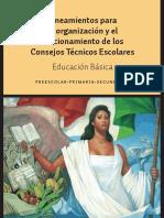 2. Lineamientos del Consejo Tecnico.pdf