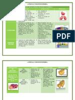 Celulas y Funciones
