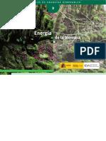 10374_energia_de_la_biomasa_a2007 (1).pdf