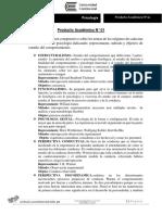 PRODUCTO ACADEMICO N° 1.docx