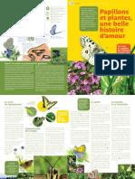 4-papillon.pdf