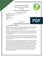 estudio del dioxido de crabono.docx