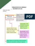 Organizador Gráfico Transferencia Combinada de Calor- Andrea Armijos