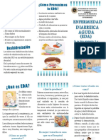 FOLLETO EDA.docx