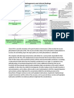 Phenylketonuria Pathogenesis