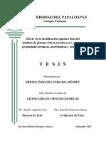 Almidon-de-Platano.pdf